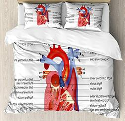 Bedding 4 Piece Educational Medical Structure of the Hearts