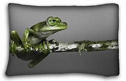 Custom Characteristic  Standard Size Pillowcase for Hair & F