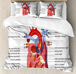 Ambesonne Educational Duvet Cover Set Twin Size, Medical Str