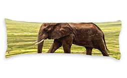 """Diuangfoong Elephant Body Pillow Covers Cases 20""""x54"""""""