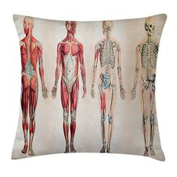 Ambesonne Human Anatomy Throw Pillow Cushion Cover, Vintage