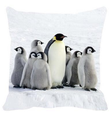 lovely cute white penguin rookery