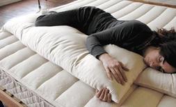 "Holy Lamb Organics ""Full Body"" Pillow - Case"
