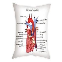 iPrint Polyester Throw Pillow Cushion Cover,Educational,Medi