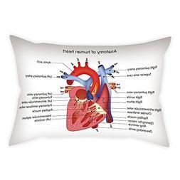 iPrint Satin Throw Pillow Cushion Cover,Educational,Medical