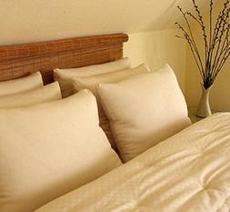 Holy Lamb Organics Wool Bed Pillow - Standard - Medium Fill